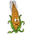 fresh corn cartoon vector image