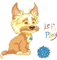 Funny shaggy puppy wants to play vector image vector image