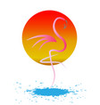 stylish flat design flamingo icon silhouette vector image