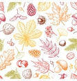 Autumn seamless pattern with leaves vector image vector image