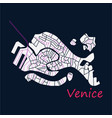 City map of venice with well organized separated