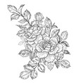 hand drawn floral bunch with roses buds and leaves vector image vector image