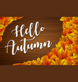 hello autumn wooden background colorful leaves vector image