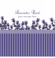 Lavender Card with Vintage border vector image vector image