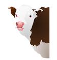 of a cows head vector image vector image
