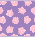 pink chrysanthemum on purple background vector image vector image