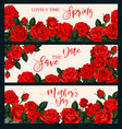 rose flower banner for greeting card or invitation vector image vector image
