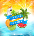 summer funny poster design with parrot cockatoo vector image vector image