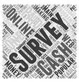 Surveys For Cash Word Cloud Concept vector image vector image