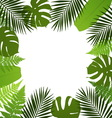 Tropical leaves background Frame with vector image vector image
