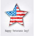 11th of November Veterans Day vector image