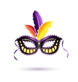 colored carnival mask vector image vector image