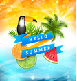 summer poster design with parrot toucan slices of vector image vector image