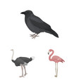types of birds cartoon icons in set collection for vector image vector image