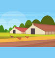 free range chicken on a traditional poultry farm vector image