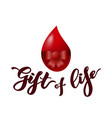 lettering gift of life typographic composition vector image