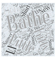Do I Need to Bathe My New Kitty Word Cloud Concept vector image vector image