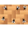 Many flies on the wooden floor vector image