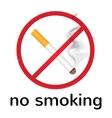 sign no smoking vector image vector image