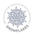 snowflake logo vector image