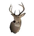 Whitetailed Deer Buck
