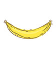 banana sketch and doodle vector image vector image