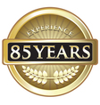 Eighty Five Years Experience Gold vector image vector image