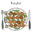 falafel on skewer on plate with arugula leaves vector image vector image