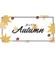 hello autumn maple leaves nut background im vector image vector image