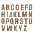 painted wood font vector image vector image