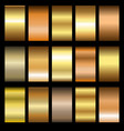 set gold gradients vector image vector image