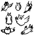 sketchy owls set artistic hand-drawn birds vector image vector image