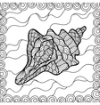 Stylized shell vector image