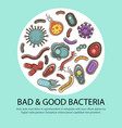 viruses and bacteria poster for medical healthcare vector image vector image