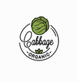 cabbage vegetable logo round linear green cabbage vector image