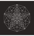Geometric low poly line star vector image