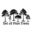 pine trees silhouettes vector image vector image