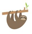 sloth hanging on tree branch cute cartoon kawaii vector image
