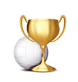 volleyball award volleyball ball golden vector image vector image