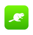 canadian beaver icon digital green vector image
