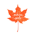 hand drawn lettering a phrase autumn sale vector image