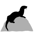 Otter on rock vector image
