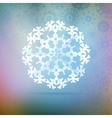 Paper snowflakes for winter background vector image vector image