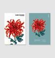 chrysanthemum macro wild garden flower floral vector image