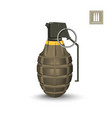 detailed realistic image of hand grenade vector image vector image