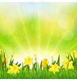Flowers Easter Background vector image vector image