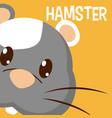 hamster cute animal cartoon vector image