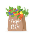 paper bag with vegetables vector image vector image