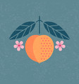 peach with leaves and flowers vector image vector image
