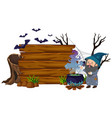 wooden board with wizard and bats vector image vector image